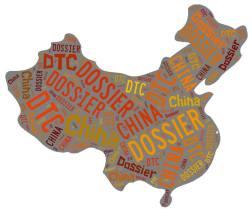 China-DTC-graphic_2